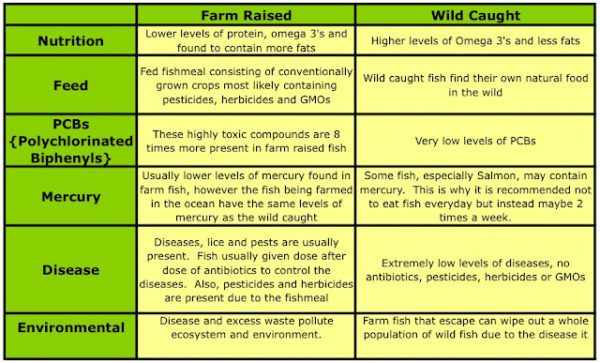 chart on farm-raised and wild fish