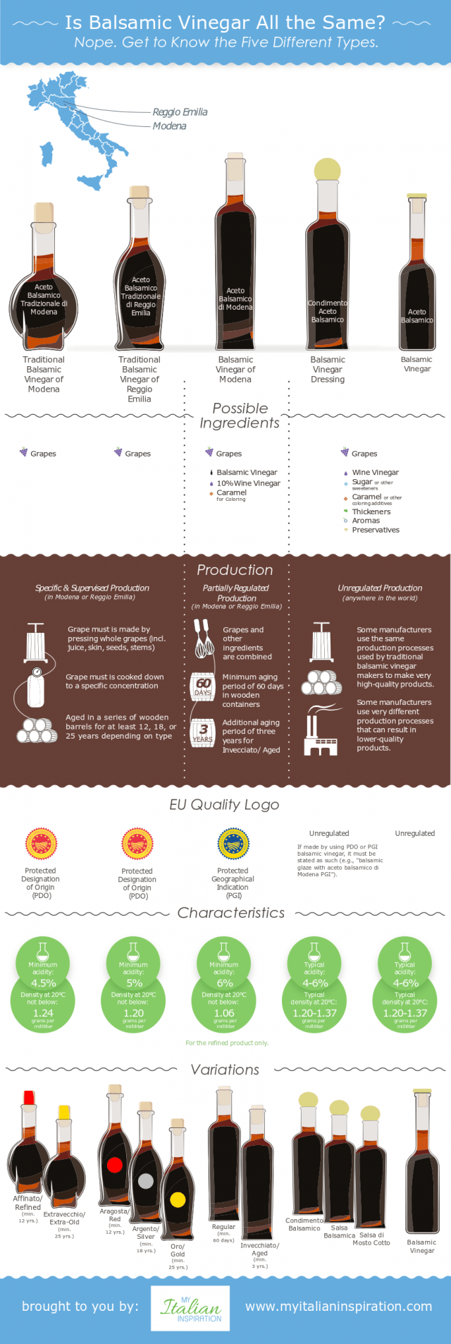 balsamic vinegar infographic